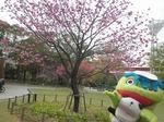 横浜公園3